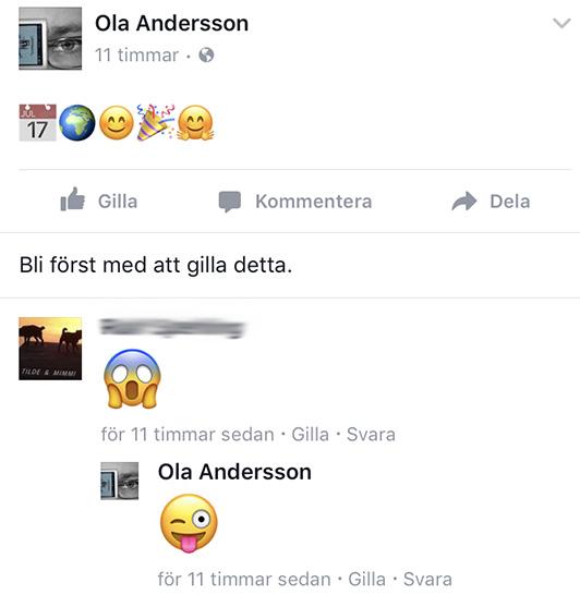 Skärmdump från Facebook-konversation 4
