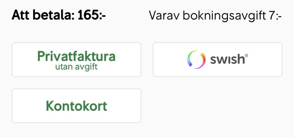 Skärmdump på SJ:s app med privatfaktura-knapp